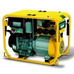 Бензиновый генератор ENDRESS ESE 604 DYG DIN