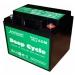 Аккумулятор глубокого разряда EverExceed DP-1226
